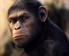 The 2012 Oscar goes to… Caesar the ape